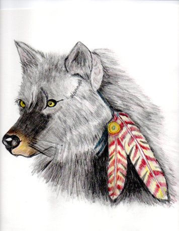 Orginal art by Jackie Popp (wolf) pencils
